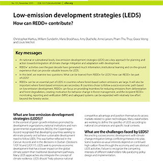 Low-emission development strategies (LEDS): How can REDD+ contribute?
