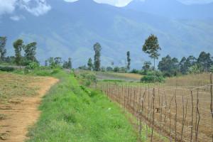 Vulnerable area in Kibangay, Lantapan, Bukidnon, Philippines. Photo: - Ophelia Rosario/ICRAF