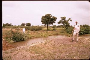 Rainwater harvesting. Photo: International Rivers