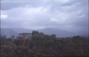 RS28555_kagwene landscape12