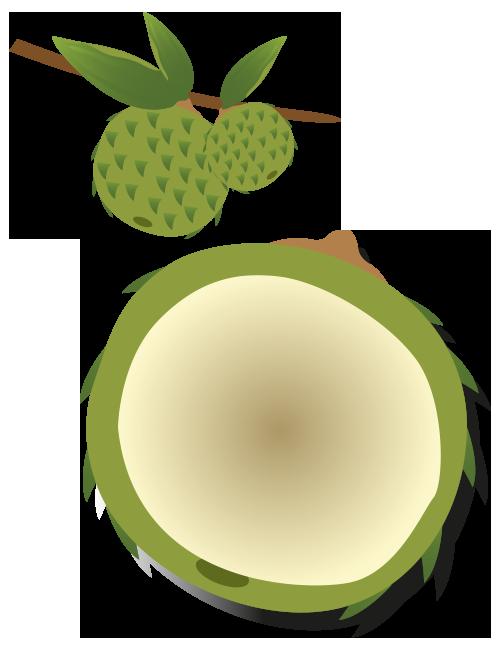 https://www.foreststreesagroforestry.org/wp-content/uploads/2021/04/WildJack-Fruit.png